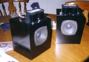 DIY Speaker Project